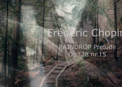 Prelude Op. 28. Nr. 15 (Raindrop)