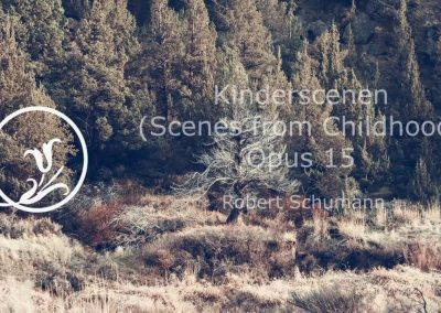 Robert Schumann – Kinderscenen Op 15: Of Foreign Lands and Peoples