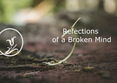 Reflections of a Broken Mind
